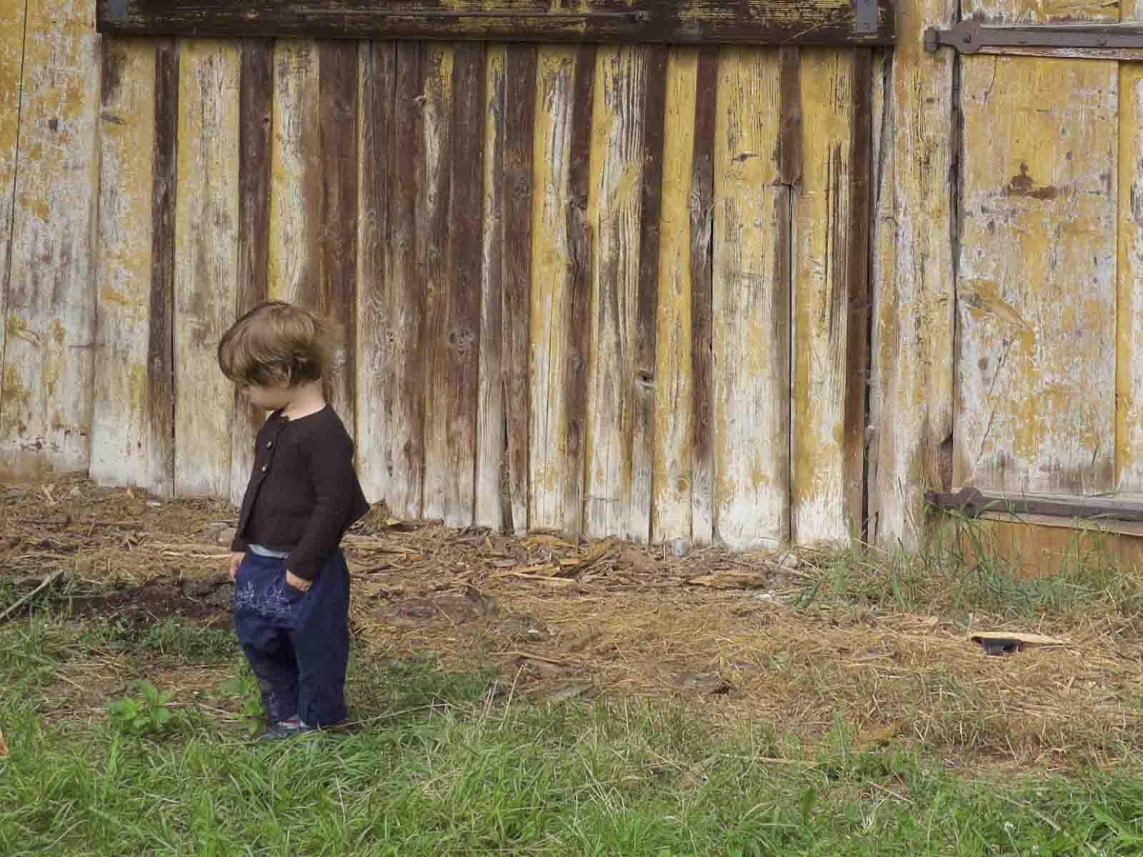 Kinderstrickjacke Juma, 70% Merino/30% Cashmere, Gr. 68-110 Kinderhose Halodri mit Traktorstickerei, 100% Baumwolle, Gr. 68-98